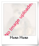Image of Huan Huan